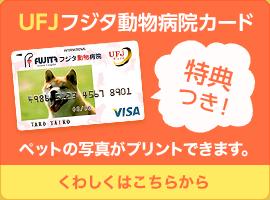 UFJフジタ動物病院クレジットカード